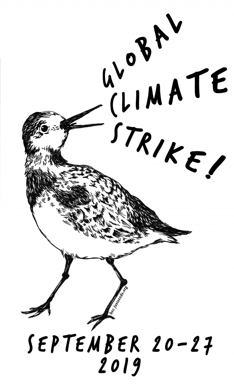 bec young climate strike bird