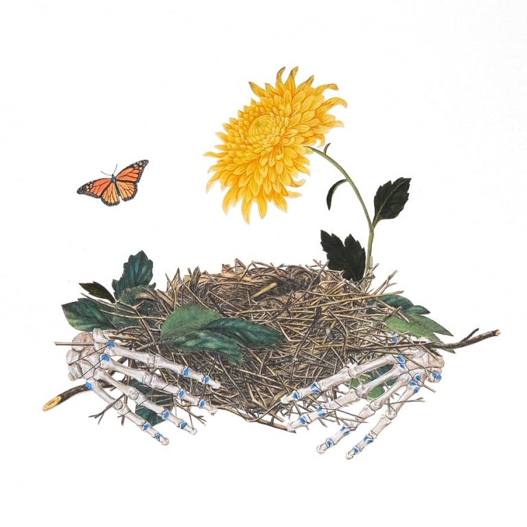 Interwoven Ellie Douglas nest2