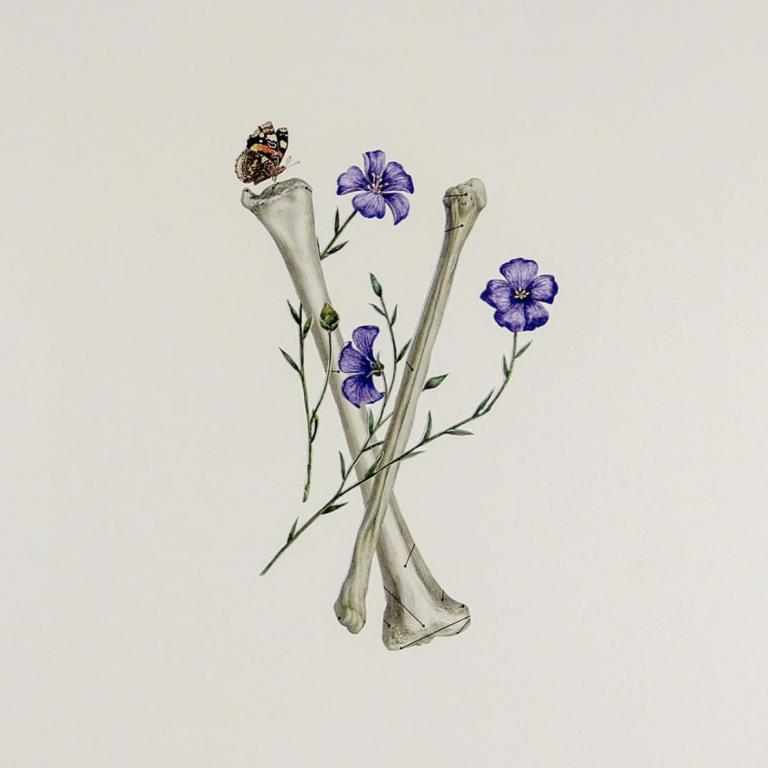 Ellie Douglass collage - arm bones with purple flowers