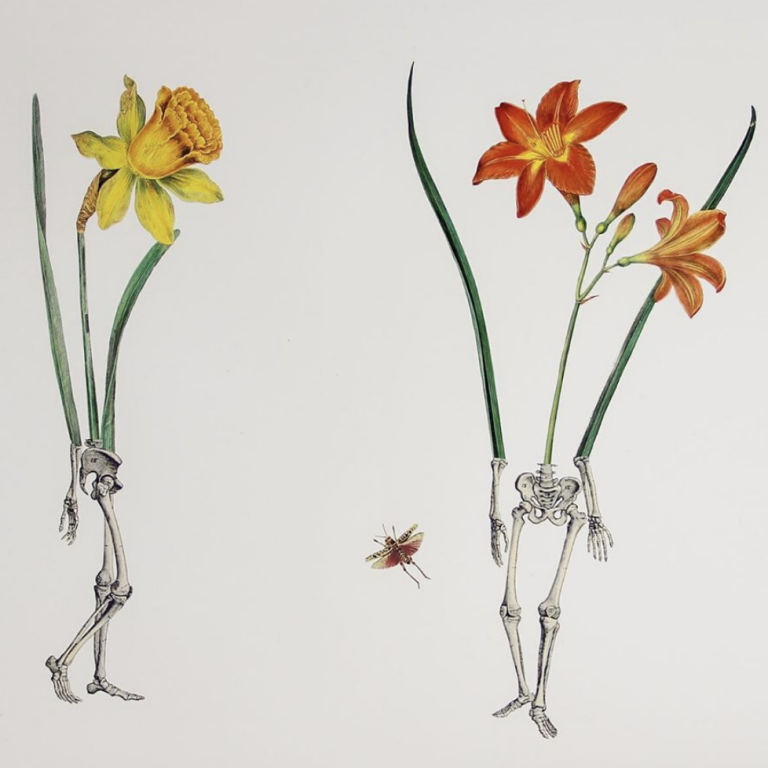Ellie Douglass collage - dual pelvis and legs with yellow and orange flowers